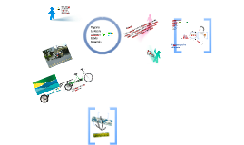 Programa ECO - Ecolmeia & Catador Organizado