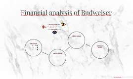 Financial analysis of Budwiser