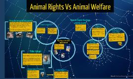 Animal Rights Vs Animal Welfare