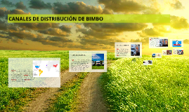 Copy of CANALES DE DISTRIBUCION DE BIMBO