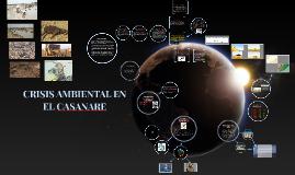 CRISIS AMBIENTAL EN       EL CASANARE