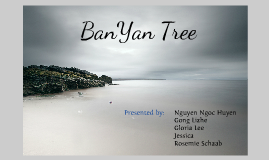 Copy of BanYan Tree Strategy Report