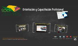 Orientación y Capacitación Profesional