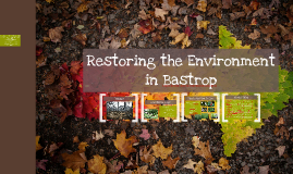 Restoring the Environment