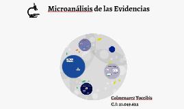 Microanálisis de las Evidencias