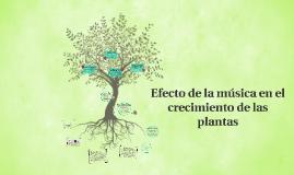Copy of Efecto de la música en el crecimiento de las plantas