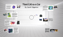 Cell Compared To A Car British Automotive