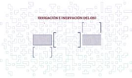 IRRIGACIÓN E INERVACIÓN DEL OJO