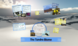 Ice Arisa Chuklin- Tundra Biome