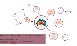 Determinantes Sociales de la Salud en Habitantes de Calle, Municipio de Pasto