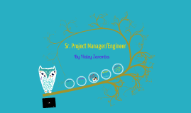 Sr. Project Manager/ Engineer