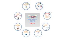 Copy of Tesco PMO HR Strategy -- V.04