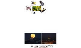 20170113 - FIL CRIANÇAS - 5 animais.docx