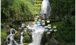 Proyecto Cabañas Ecologicas
