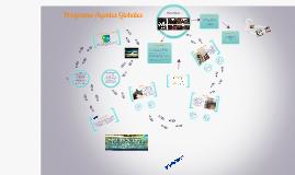 Programa Agentes Globales 2013 II