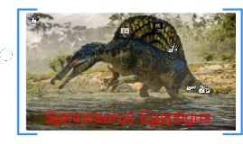 How paleontology relates to math