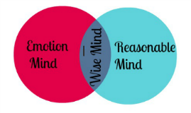 """When we are in Emotion Mind, we """"act how we feel"""".  Emotion"""
