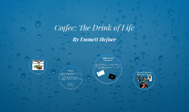 Coffee: The Drink of Life
