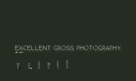 Copy of Gross Pathology Photography