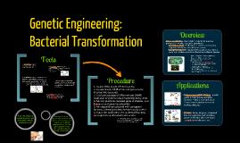 BI 3: Bacterial Transformation