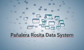Pañalera Rosita Data System