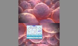 T-cell Receptor Signalin Pathway