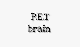 my P.E.T brain!