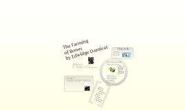 The Farming of Bones by Edwigde Danticat