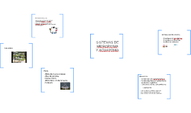 SISTEMAS DE HIDROPONIA Y ACUAPONIA