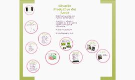 Copy of Circuito Productivo del Arroz