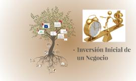 Plan de Inversion Inicial