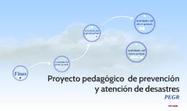 Proyecto pedagogico  de prevención y atencion de desastres