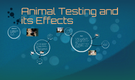 Animal Testing and its Effects