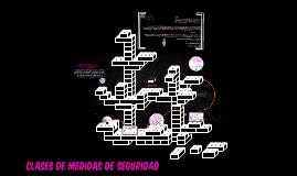 CLASES DE MEDIDAS DE SEGURIDAD