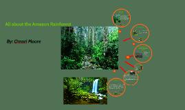 Amazon rianforest