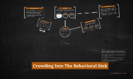 Copy of Crowding Into The Behavioral Sink