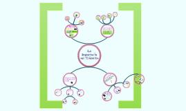 Mapa Mental Ingeniería en Tránsito