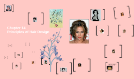 Principle of Hair Design Chapter 12