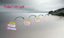 Copy of Product Life Cycle