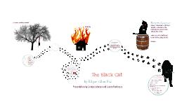 Copy of Black Cat