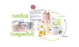 Copy of COSTOS CONJUNTOS