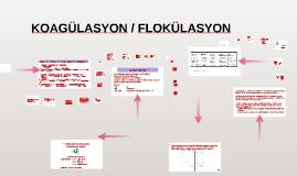 KOAGÜLASYON /  FLOKÜLASYON