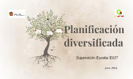Copy of Planificación diversificada