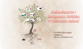 Neuroeducación e Inteligencias múltiples en Educación Infantil
