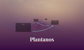 Plantanos