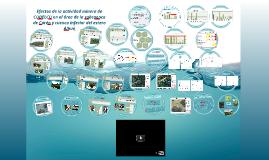 Efectos de la actividad minera de CODELCO en el área de la s