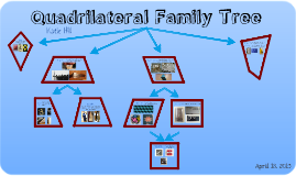Quadrilateral family tree by katie hill on prezi ccuart Gallery