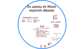 Os selves de Mead