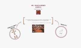 APELL - Mineração e Prevenção de Acidentes