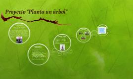 """proyecto """"planta un árbol"""""""